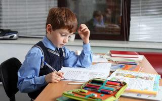 Какие новые школьные предметы в 2021?