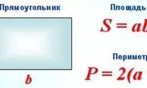 Как найти периметр и площадь прямоугольника?