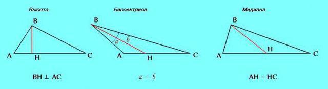 Равнобедренный треугольник: свойства, признаки и формулы