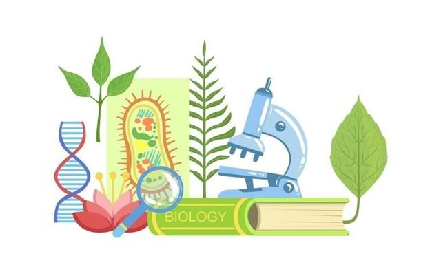 Какие бывают методы биологических исследований?