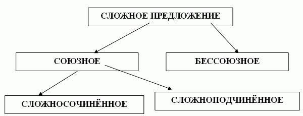 Сложные предложения с примерами