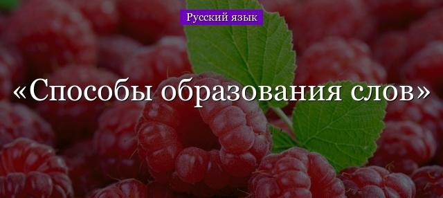 Способы словообразования слов в русском языке с примерами