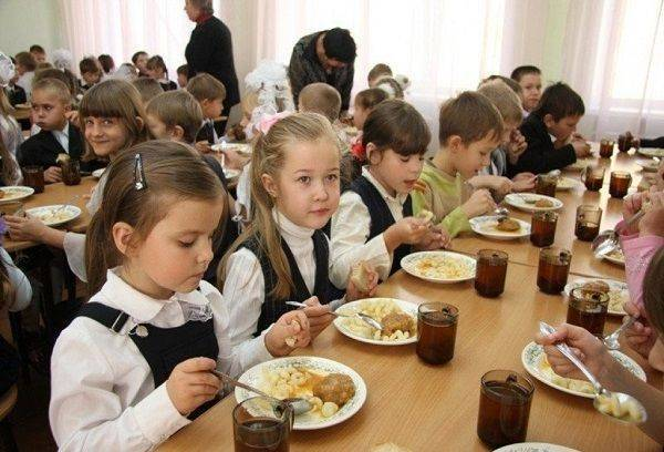 Льготное питание в школе 2020: документы, кому положено, как оформить